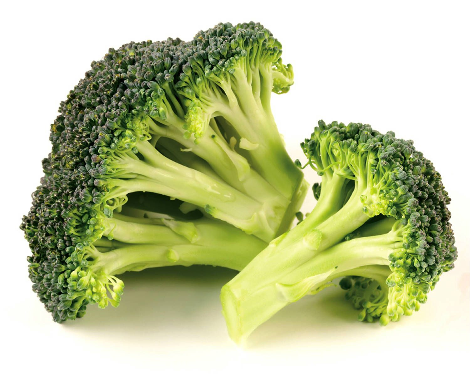 broccoli Top 10 Fat Burning Foods