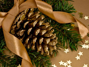 pretty pinecones Craft Ideas For Christmas