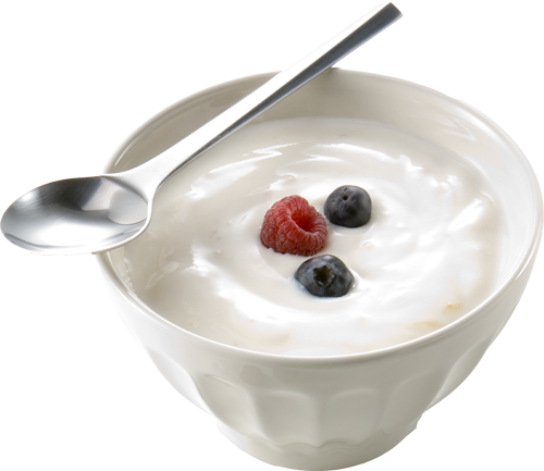yoghurt Top 10 Fat Burning Foods